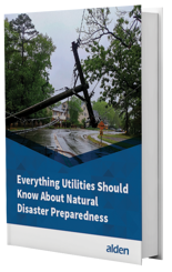 Natural Disaster Preparedness for Utilities eBook