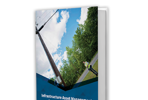 Infrastructure Asset Management for Joint Use: The Basics